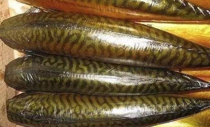 Такая рыбка всем по вкусу: скумбрия холодного копчения по-домашнему