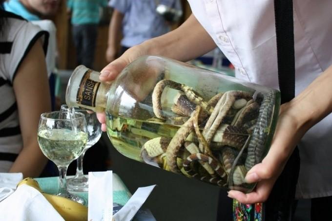 Когда женщина наливала настойку ОНА и подумать не могла, что змея оживет!