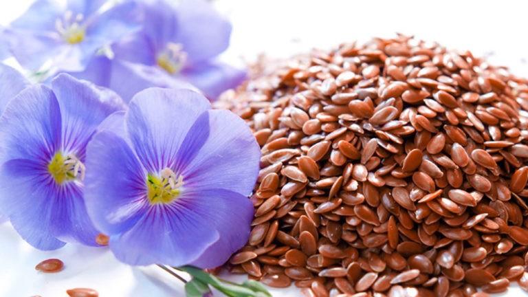 8 полезнейших трав для женского здоровья, баланса гормонов, устранения симптомов ПМС, менопаузы…