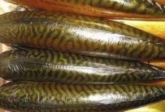Такая рыбка точно по вкусу: скумбрия холодного копчения в домашних условиях