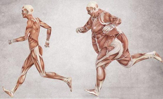 Как избавиться от лишнего веса, употребляя 3 супер эффективных средства