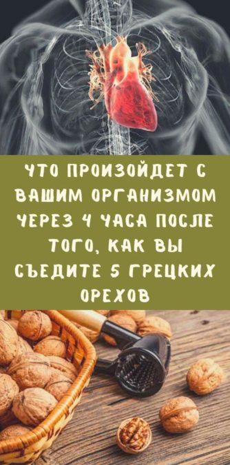 Что произойдет с вашим организмом через 4 часа после того, как вы съедите 5 грецких орехов