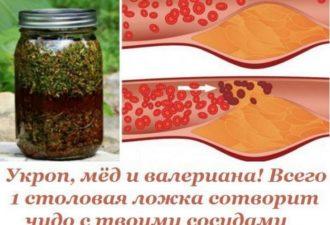 Укроп, мед и валериана! Всего 1 столовая ложка сотворит чудо с твоими сосудами…