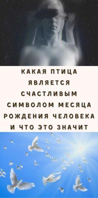 Какая птица является счастливым символом месяца рождения человека и что это значит