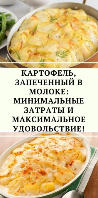 Картофель, запеченный в молоке: минимальные затраты и максимальное удовольствие!