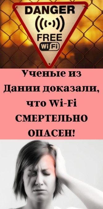 Ученые из Дании доказали, что Wi-Fi СМЕРТЕЛЬНО ОПАСЕН!
