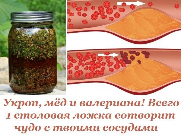 Укроп, мед, валериана - и сосуды без изъяна! Тибетский бальзам для омоложения сосудов