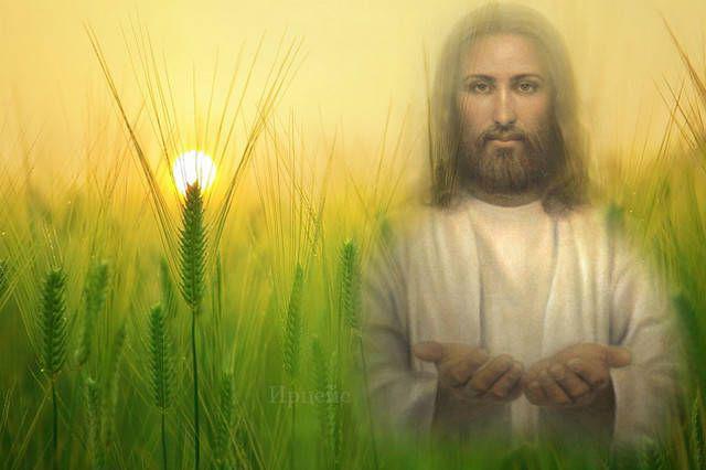 Утренняя молитва, которая очистит весь грядущий день. Да будет счастье!