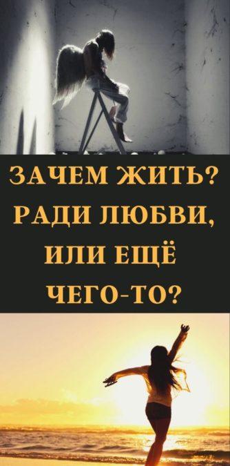 Зачем жить? Ради любви, или ещё чего-то?