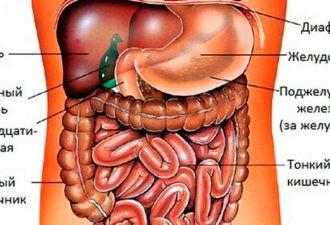 Этот овощ способен исцелить всё, что неправильно работает в нашем теле!