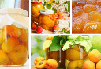 Закрываем абрикосы - топ 10 лучших и проверенных рецептов!