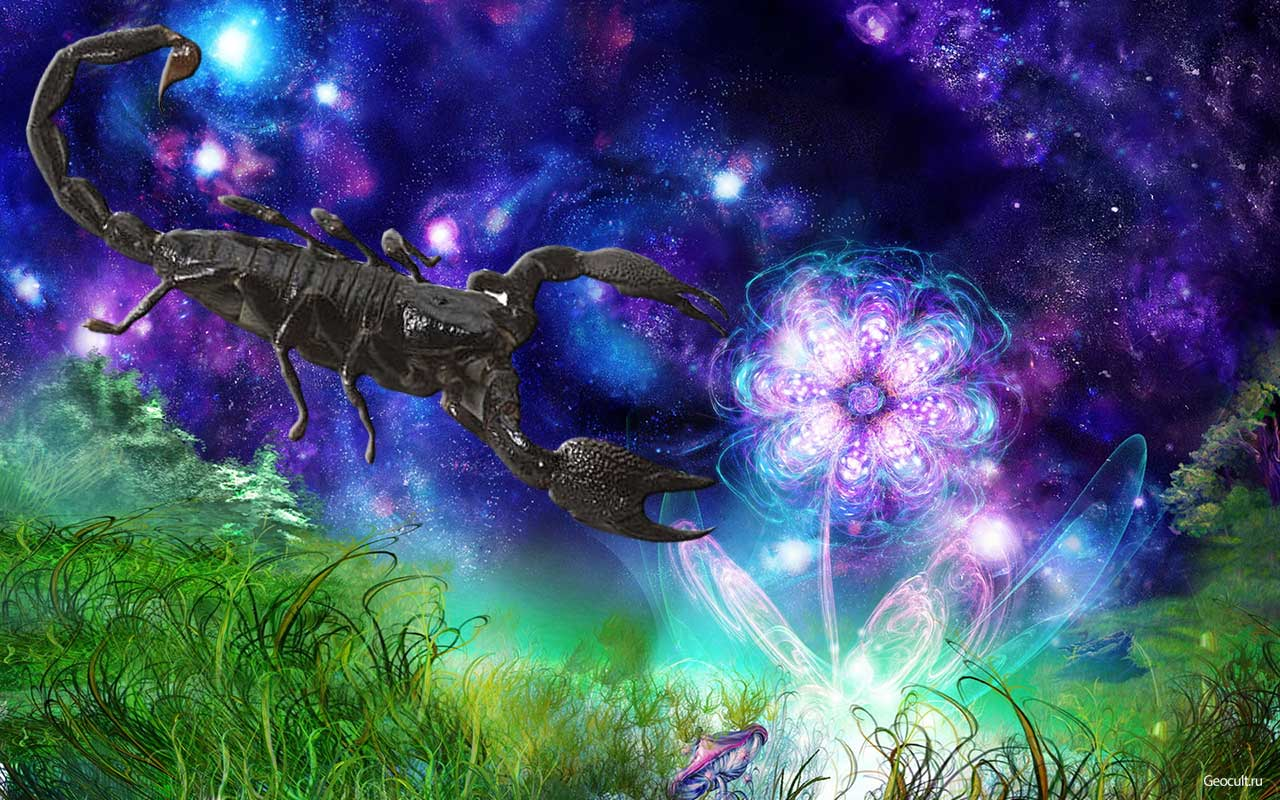 Скорпион — один из самых важных знаков Зодиака. Глубоко внутри него — мощная сила