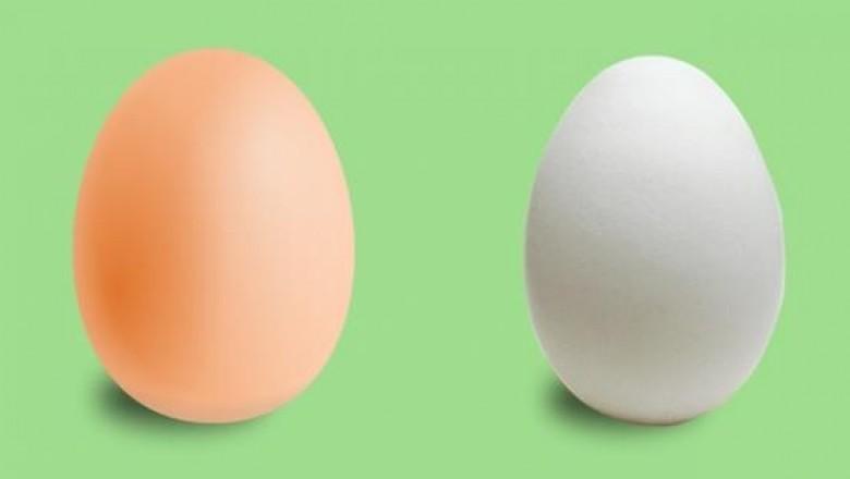 Чем белые яйца отличаются от коричневых?