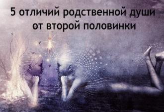 Разница между родственными душами и «вторыми половинками»