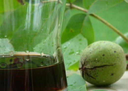 Бесценный бальзам из зеленых орехов — древнее лекарство от самых тяжёлых болезней
