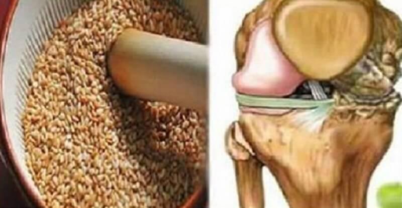 Смесь семян восстанавливает сухожилия и снимает отёк в коленях