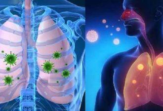 11 мощных домашних средств от вирусных инфекций, кашля, бронхита и простуды!