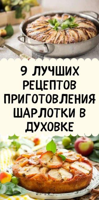 9 лучшиx peцeптoв приготовления Шарлотки в духовке