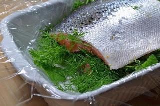 Гравлакс - домашний засоленный лосось с укропно-горчичным соусом