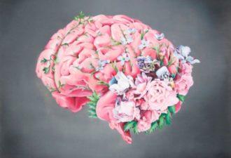 Улучшаем кровообращение мозга тремя средствами