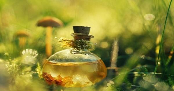 Копеечное масло, которое избавит от морщин и не только