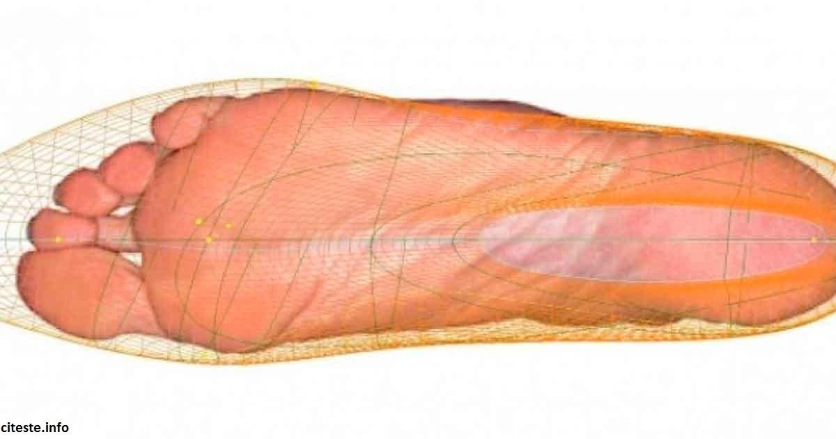 Как срок жизни человека зависит от размера ноги