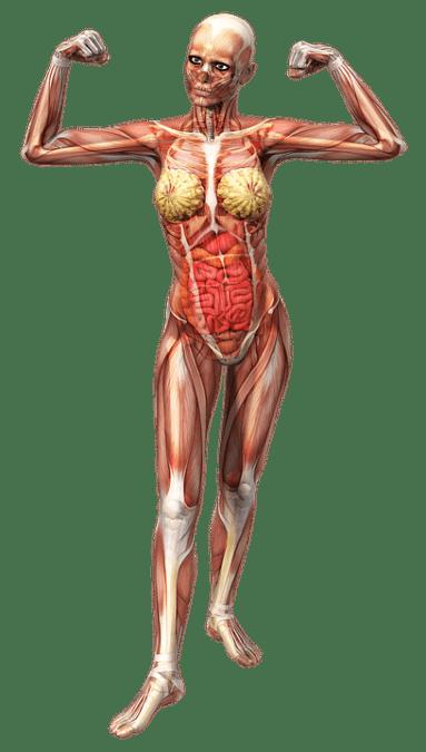 Волшебство кинезиологической техники: как обрести здоровье за 10 минут. Думаете это невозможно?