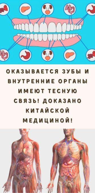Оказывается зубы и внутренние органы имеют тесную связь! Доказано китайской медициной!